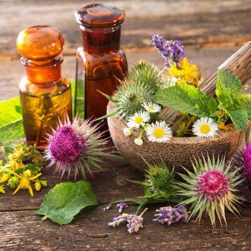 organic herbal tinctures